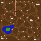 Snake Forest